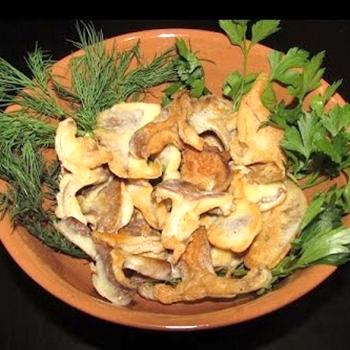 Comment faire cuire des champignons: photos, vidéos et recettes pour des plats délicieux à la maison